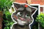 Говорящий кот Том на приеме у врача ветеринара