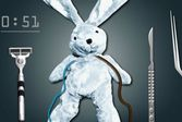 Операции домашнему кролику