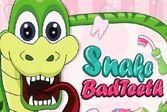 Беремся за лечение поломанных зубов змеи