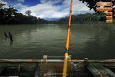 Настоящая спортивная рыбалка на реке
