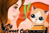 Ухаживать за милым пушистым котенком