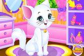 Уход за белым котёнком