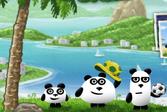 3 Панды в Бразилии