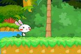 Приключения кроликов