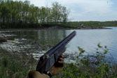 Сезон охоты на уток
