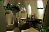 Змеи на самолете