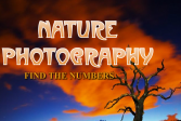Природа фотограф