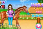 Играть Уход за лошадьми и верховая езда онлайн флеш игра для детей
