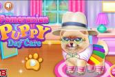 Играть Уход за померанским шпице онлайн флеш игра для детей