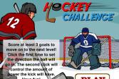 Играть Вызов в хоккее онлайн флеш игра для детей