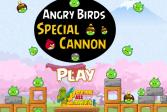 Играть Специальное оружие злых птиц онлайн флеш игра для детей