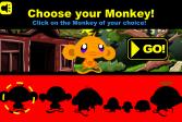 Играть Счастливая обезьянка: лепреконы онлайн флеш игра для детей