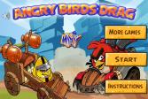 Играть Гонка сердитых птиц онлайн флеш игра для детей