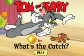 Играть Как поймать Тому Джерри? онлайн флеш игра для детей