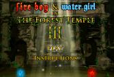 Играть Огонь и Вода 3: В Лесном Храме онлайн флеш игра для детей
