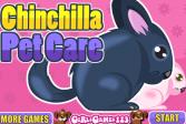 Играть Шиншилла онлайн флеш игра для детей