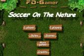 Играть Футбол на природе онлайн флеш игра для детей