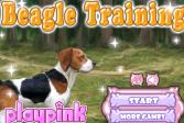 Играть Тренировка Бигля онлайн флеш игра для детей