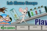 Играть Побег из лаборатории онлайн флеш игра для детей