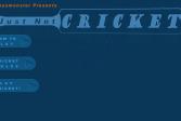 Играть Just Not Cricket онлайн флеш игра для детей