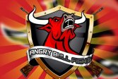 Злой бык ANGRY BULL