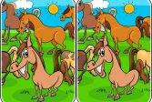 Различия животных Animals Differences