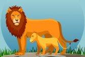 Дикие животные и их детеныши Wild Animals and Their Babies