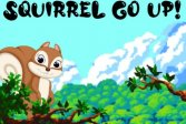 Белка поднимается Squirrel Go Up