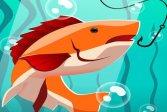 Не трогай мою рыбу Don t touch my fish