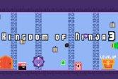 Королевство ниндзя 3 Kingdom of Ninja 3