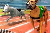 Настоящий симулятор гонок на собаках 3D Real Dog Racing Simulator 3D