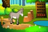 Спасение осла Donkey Rescue