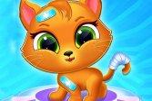 Милый кот-доктор Cute Cat Doctor