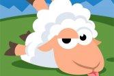 Овечья бега Sheep Run