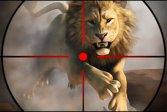 Охота на диких животных wild life hunting